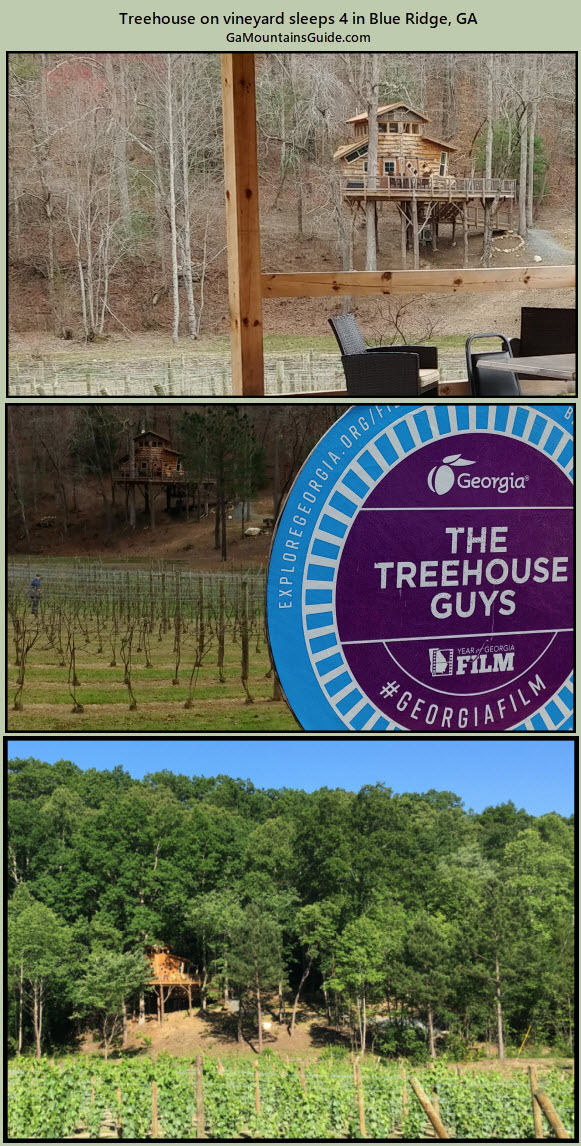 Blue Ridge Treehouse - GaMountainsGuide.com