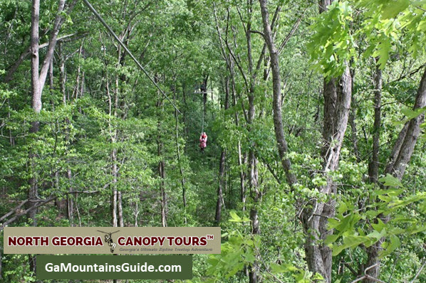 North Georgia Canopy Tours in the Georgia Mountains