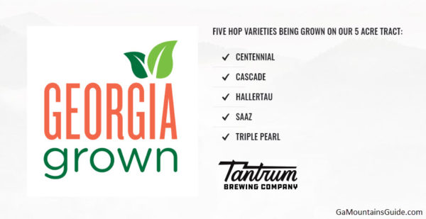 Tantrum Brewing Company in Georgia Mountains