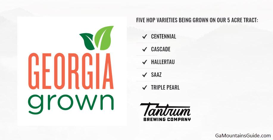 Tantrum-Brewing-Company-Georgia-Mountains