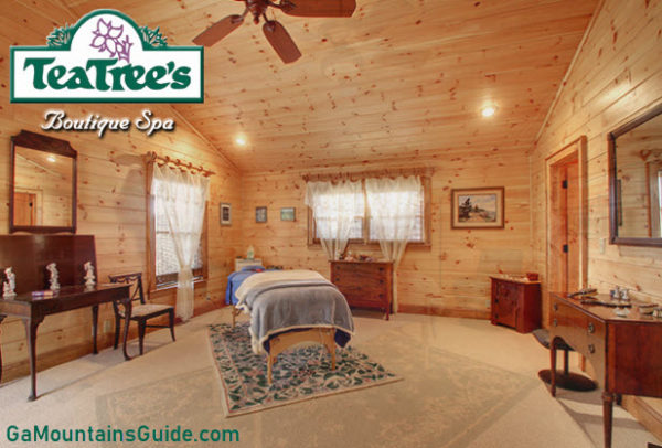 TeaTree's Boutique Spa in the Georgia Mountains