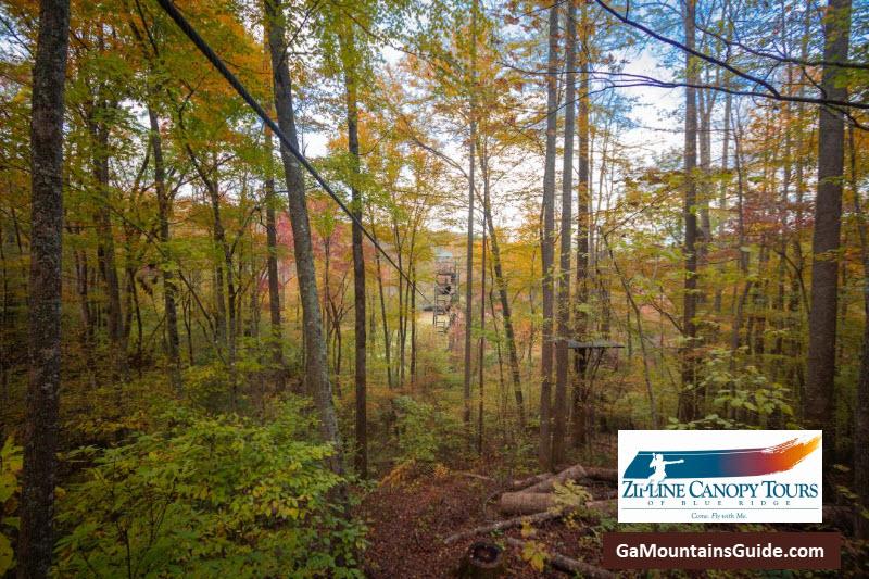 Zipline-Canopy-Tours-of-Blue-Ridge-Georgia-Mountains