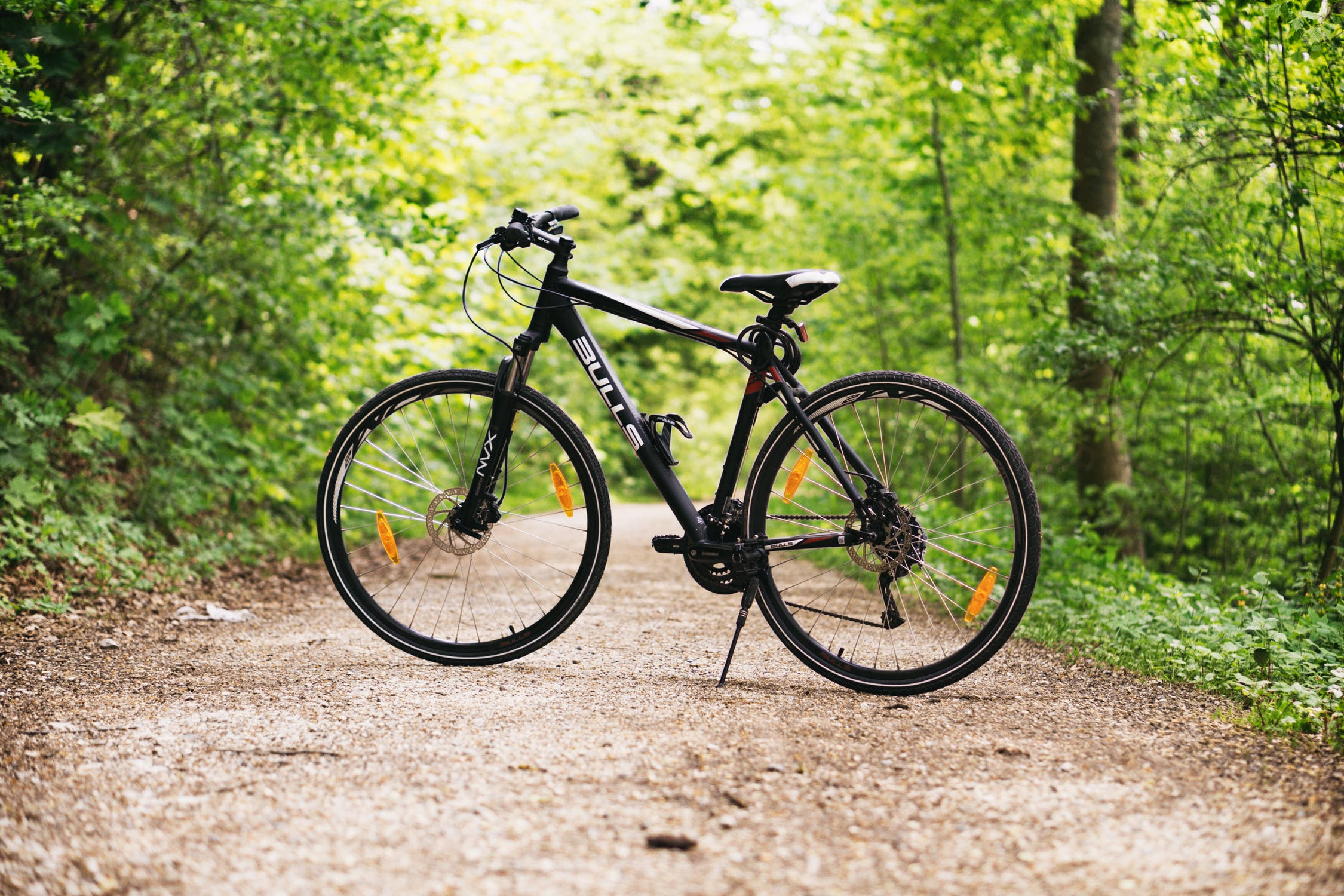 bicycle-dirt-road-green-trees