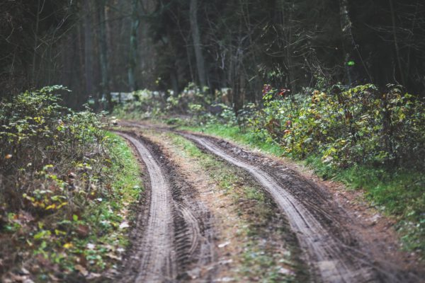 Off-road trails and ATV rides through the woods
