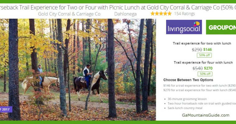 Gold City Corral & Carriage Co Horseback Riding & Picnic Lunch - GaMountainsGuide