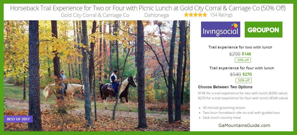 Gold City Corral & Carriage Co Horseback Riding & Picnic Lunch - GaMountainsGuide