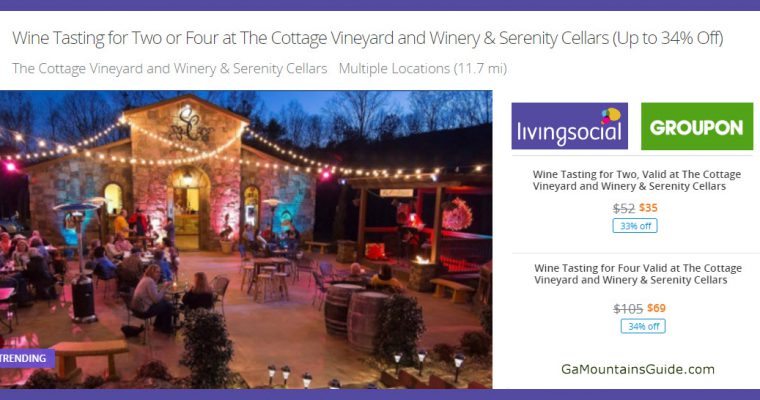 Tastings at 2 Georgia Mountain Vineyards (Cottage & Serenity) - GaMountainsGuide