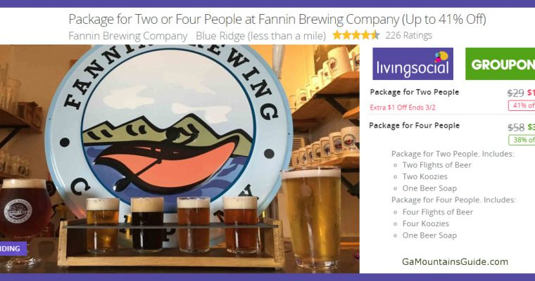 Beer Tastings at Fannin Brewing - GaMountainsGuide