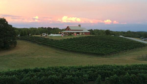 CeNita Vineyards & Winery Rental Cabin View (photo VRBO.com)
