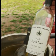 Ellijay River Vineyards Seyval Blanc