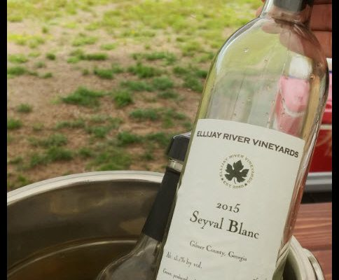Ellijay River Vineyards Seyval Blanc