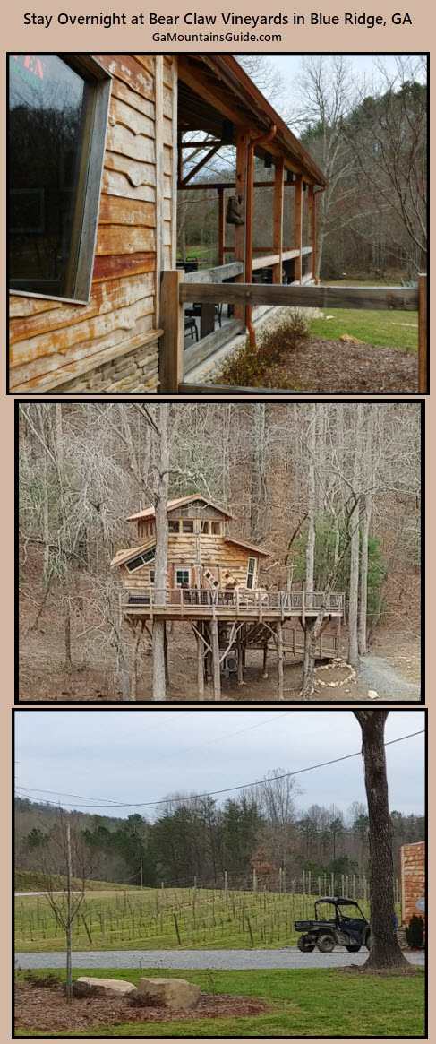 Stay at Bear Claw Vineyards in Blue Ridge, GA - GaMountainsGuide.com