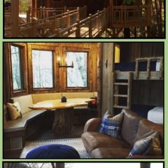 Canopy Blue Treehouse with hot tub sleep 6 - GaMountainsGuide.com