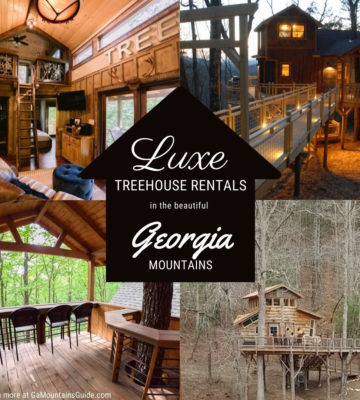 Luxury Treehouse Rentals in the North Georgia Mountains