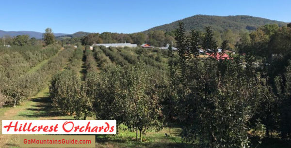 Hillcrest Orchards in the North Georgia Mountains