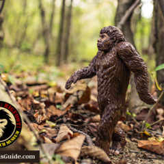 Expedition Bigfoot and The Sasquatch Museum in Georgia Mountains