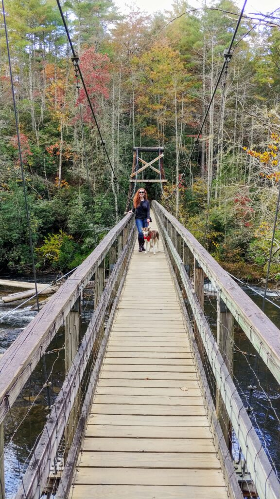 Swinging Bridge Over the Toccoa River on the Benton MacKaye Trail