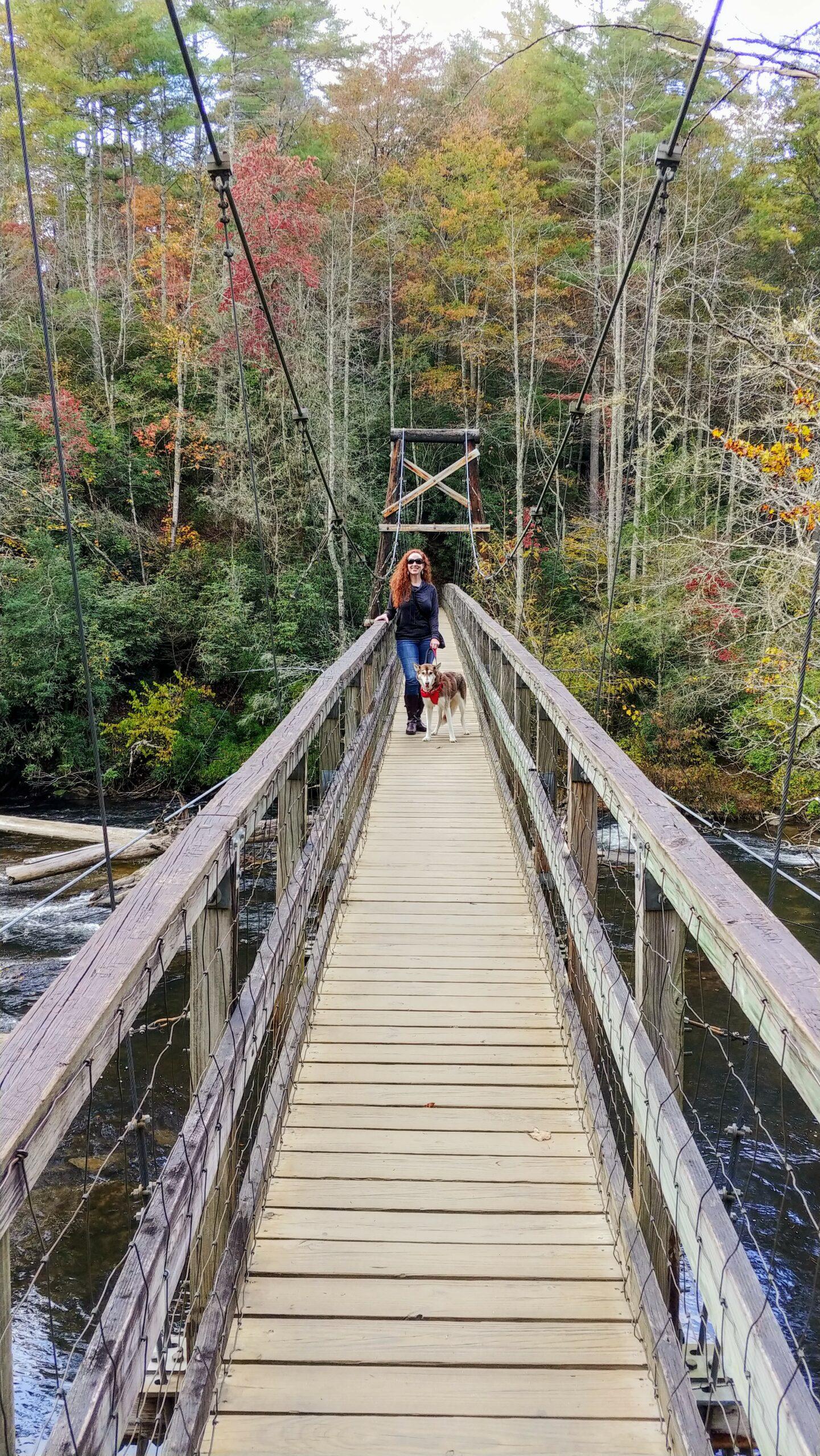 Swinging-Bridge-Toccoa-River-Benton-MacKaye-Trail-Alyce-Nina-2020-10
