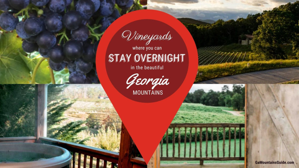 Vineyards Where You Can Stay Overnight in the North Georgia Mountains