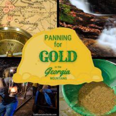 Best Gold Panning Georgia Mountains