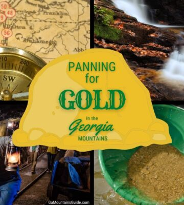 Best Gold Panning Georgia Mountains