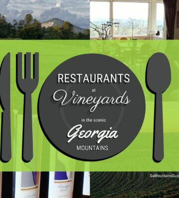 Best Restaurants in North Georgia at Vineyards