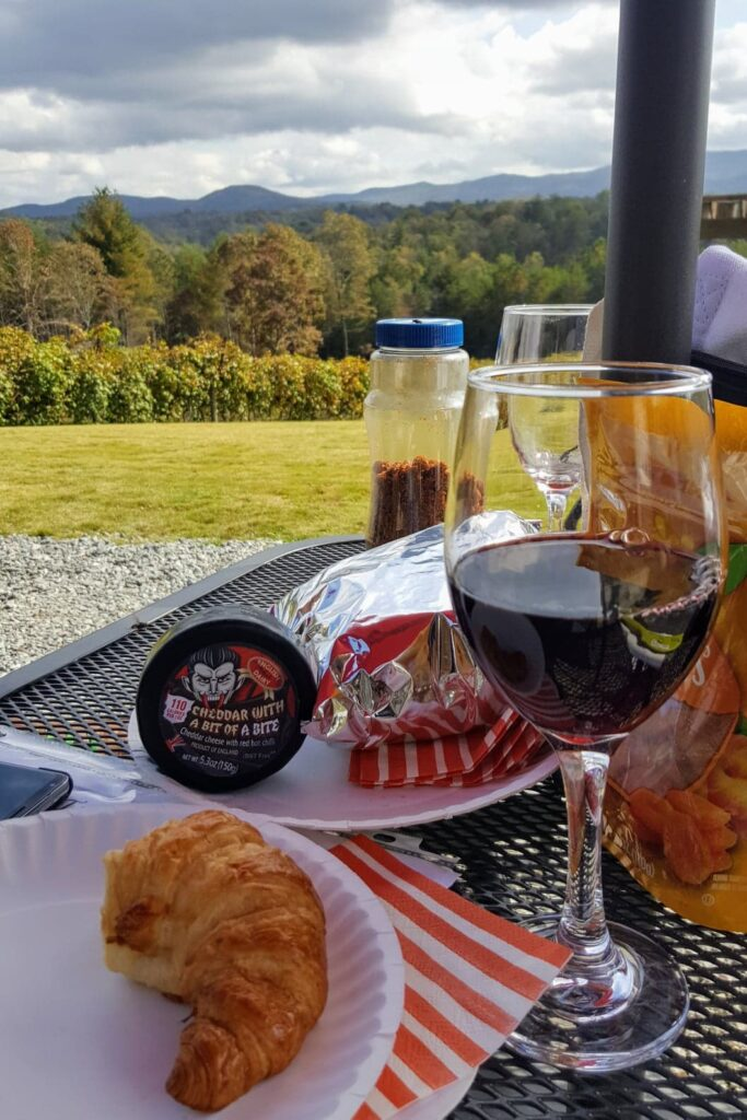Ott Farms Vineyard Wine with Picnic Lunch and Gorgeous Views!