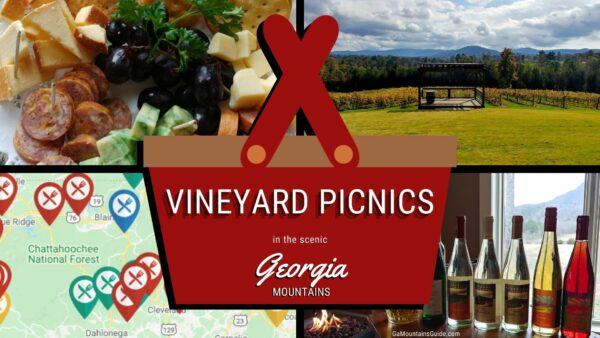 Enjoy a Picnic at a Scenic Vineyard in the Georgia Mountains