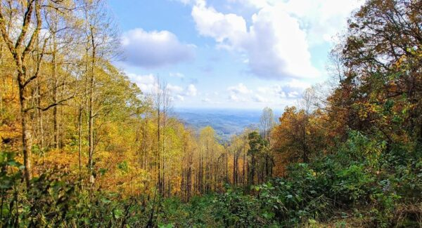 Woody Gap Overlook on the Appalachian Trail in Autumn